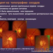 Новые методы обучения врачей-офтальмологов диагностике глаукомы путем оценки ДЗН (ONE – Optic Nerve Evaluation) Ловпаче Д.Н., Белые ночи-2011. Lovpache D.N. New methods of training of ophthalmologists diagnose glaucoma by assessment of optic disk. Фокус на диагностику. Focus on the diagnosis. Программа ONE, The Programm ONE: Optic Nerve Evaluation. Академия глаукомы. Клуб знатоков портала орган зрения www.organum-visus.com